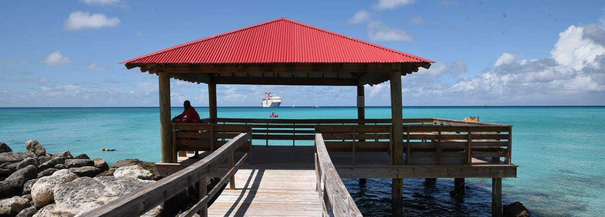 a beatiful covered pier in the blue waters of princess cays while a carinval ship sails in the background
