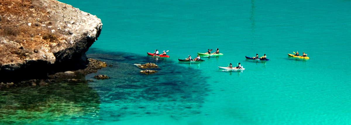 take a kayak tour of the coastline in la paz