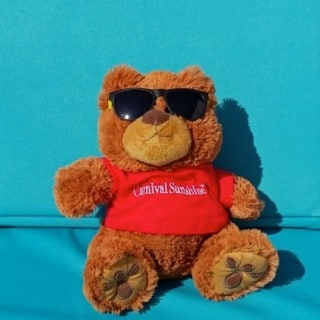 A teddy bear wearing sunglasses lays on a beach chair with a Carnival Sunshine tshirt