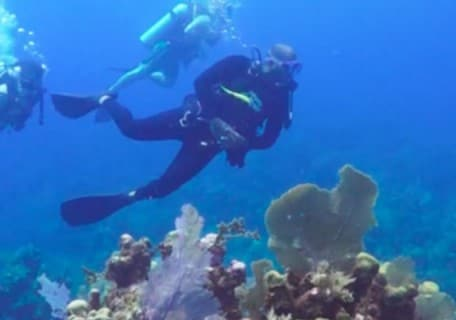 Scuba Diving in Mahogany Bay on Isla Roatan