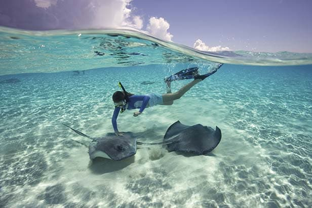 woman snorkeling with two stingrays
