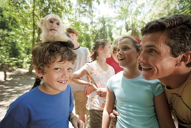 happy young boy with a monkey on his head while his family watches