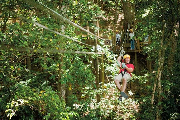 man ziplining through the trees in the caribbean