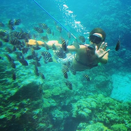a man snuba diving with tropical fishes in mahogany bay