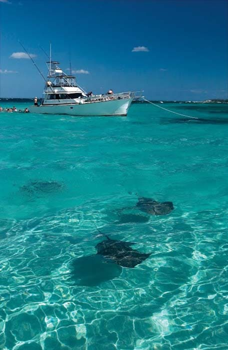 stingray boat in grand cayman