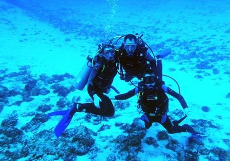The Best Dive Sites in the Caribbean