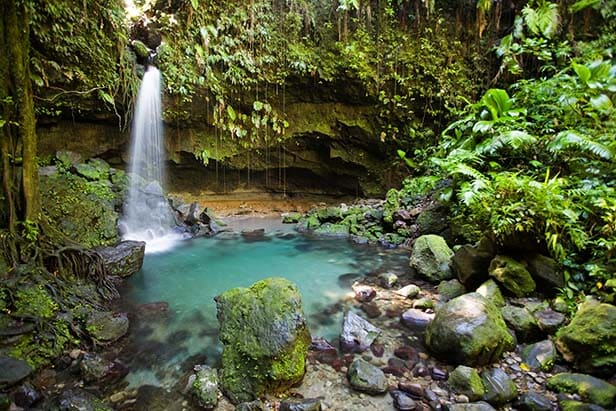 tropical waterfall and pool in the rainforest of Dominica