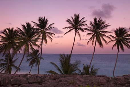 barbados bottom bay at sunset