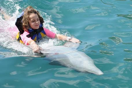 a girl swimming with a dolphin in tortola