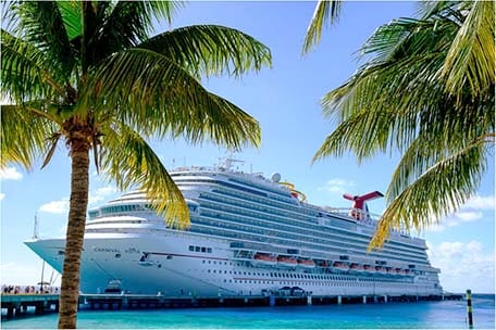 View of Carnival Vista docked in Grand Turk behind palm trees