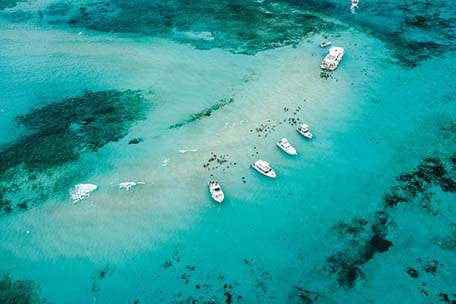 Overhead photo of Stingray City