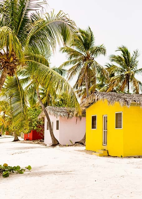 Colorful huts along the beach with palm trees surrounding them