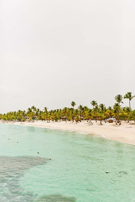 View from the water of sandy beach and many palm trees on Catalina Island, Dominican Republic