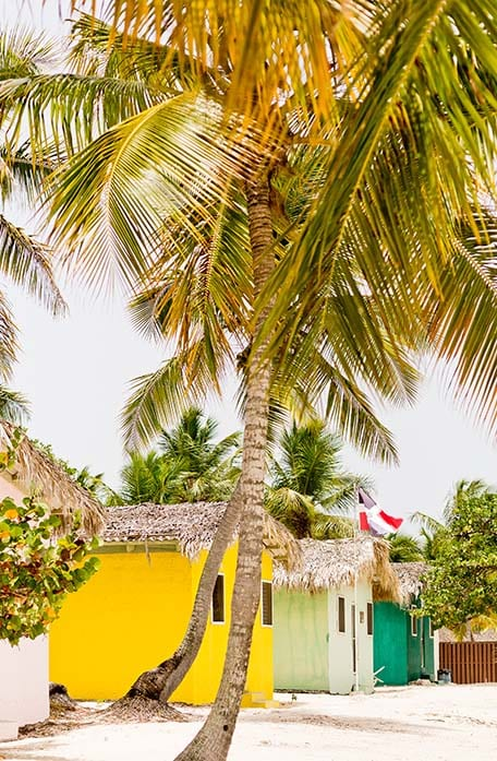 Palm trees and colorful huts in the Dominican Republic