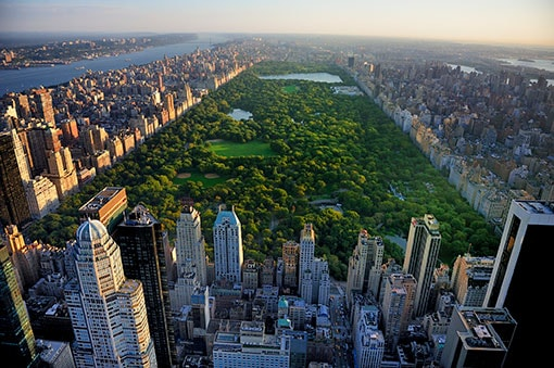 overview of central park