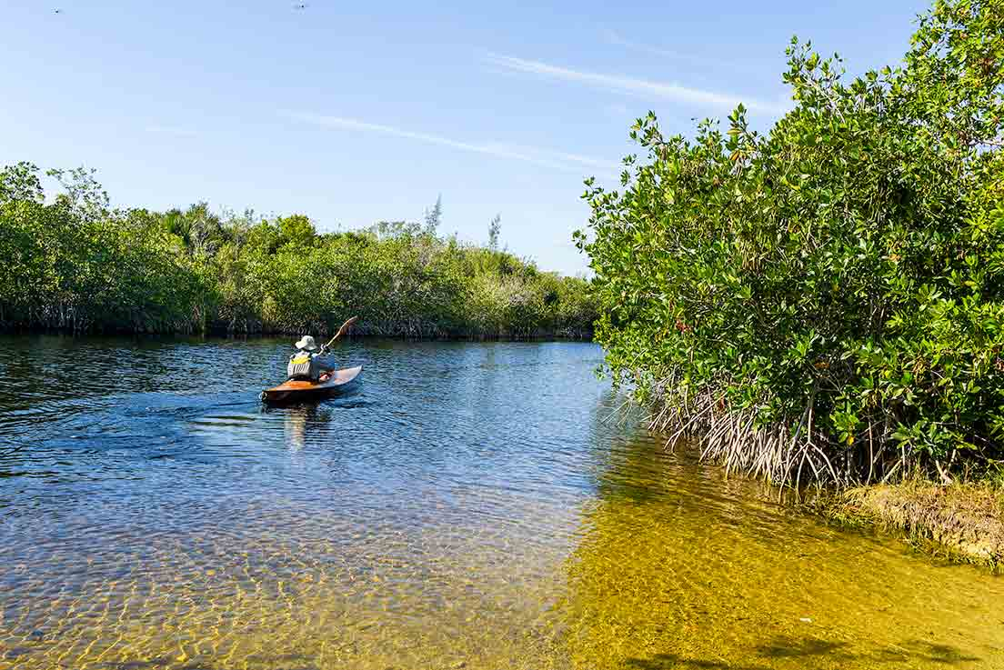 man kayaking the florida everglades