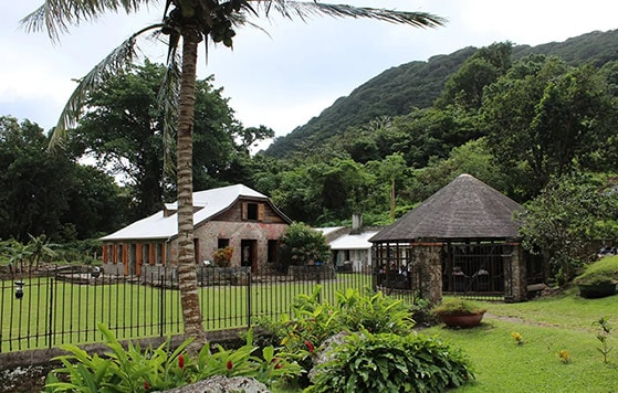 the estate popular for producing cocoa, sugar cane and coffee, bois cotlette, located in dominica