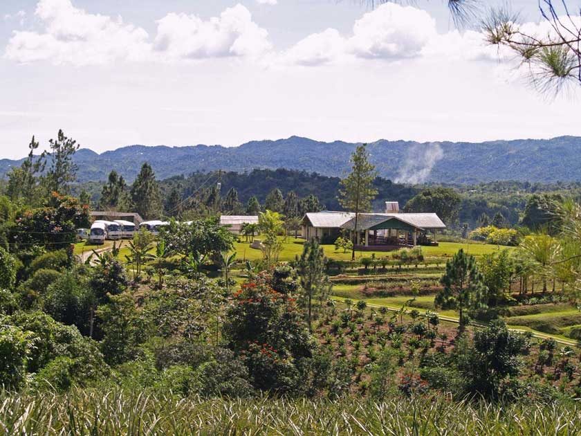 croydon plantation in jamaica