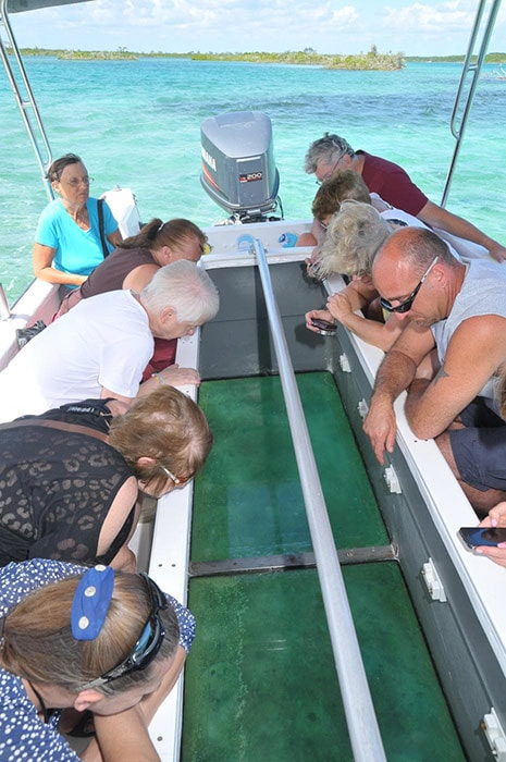 group of people looking at the underwater wild life in half moon cay through a glass bottom boat