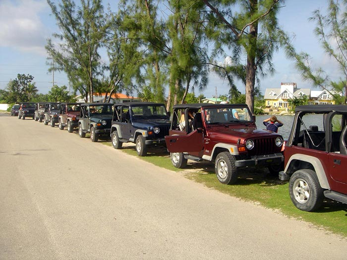multiple 4x4 jeeps parked along the street in grand cayman