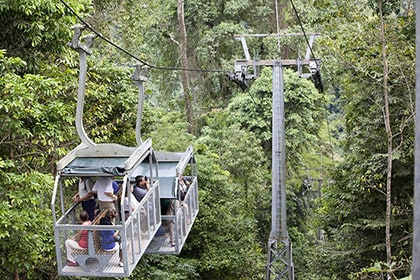 people onboard aerial tram, taking pictures of veragua rainforest