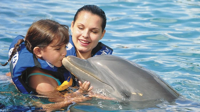 mother stands next to her daughter as she kisses a dolphin at st kitts dolphin discovery park