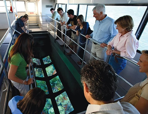 people looking at the coral reefs underneath a glass bottom boat in key west