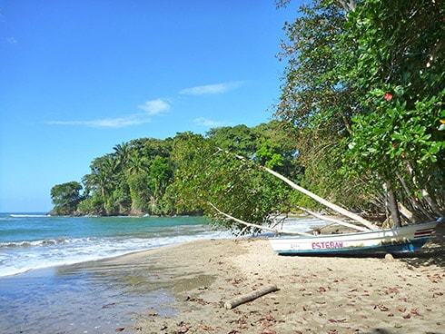 playa cocles near the town of puerto viejo de talamanca