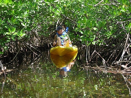 woman kayaking through the mangrove forest in grand cayman