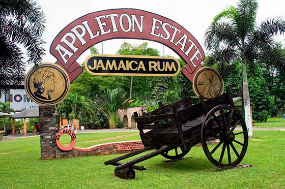 old wooden cart in front of apple estate Jamaica rum sign