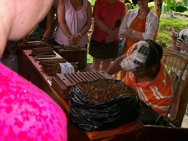 dominican man rolls cigars by hand