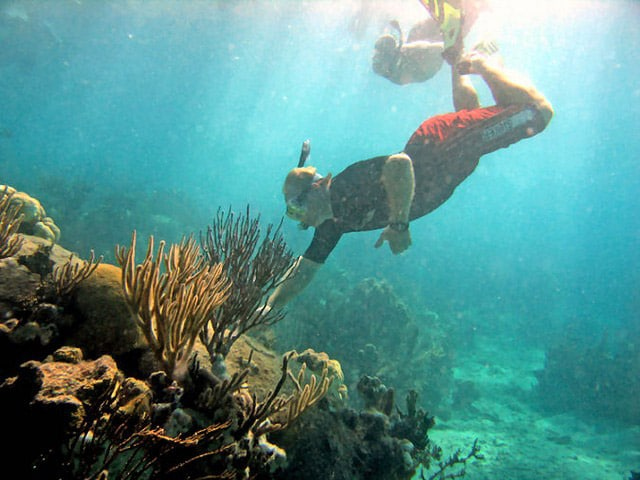 man touching coral reef while snorkeling in Marina Cay