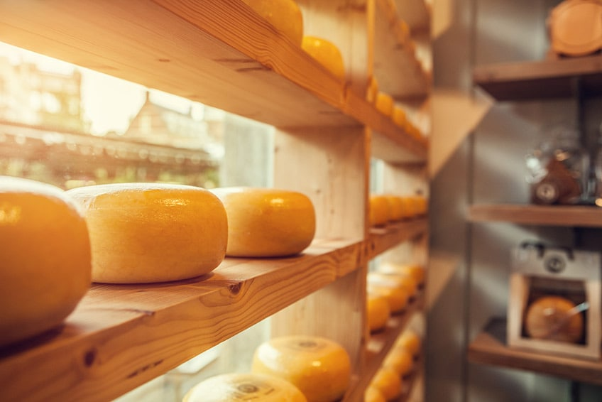 wheel of dutch cheese on shelves