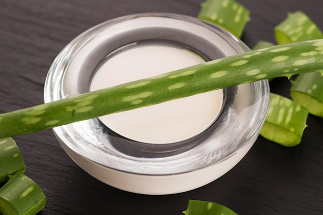 aloe vera leaf over aloe vera cream