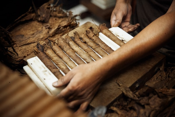 row of hand-made cuban cigars