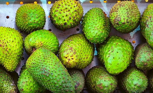 several spiky green fruits called soursop from tortola