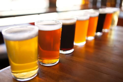 8 different samples of craft beers found in ensenada mexico