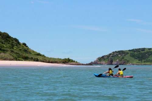 man and woman kayaking on blue and red kayaks off the coast of mazatlan