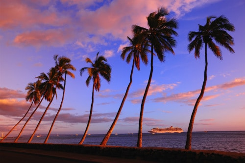 several palm trees overlooking a carnival cruising ship during the sunset in hawaii