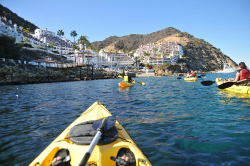 group of people kayaking towards catalina island on yellow kayaks