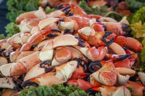 pile of key west stone crabs served on lettuce