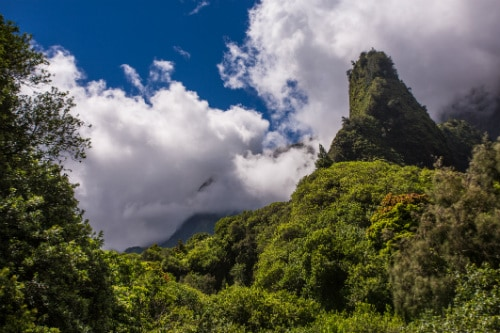 iao needle sticking out in the lush forest of iao valley state park maui
