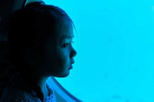 little girl gazing out the window of a submarine, admiring the underwater sea life