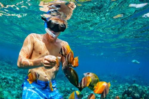 man in blue shorts snorkeling with beautiful orange fish in kauai