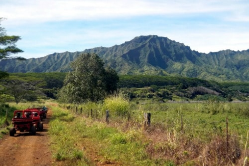 4x4 red mudbug riding along an off road towards the mountains of kauai hawaii