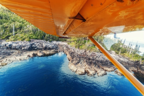 view of the alaskan forest from the inside of a yellow seaplane