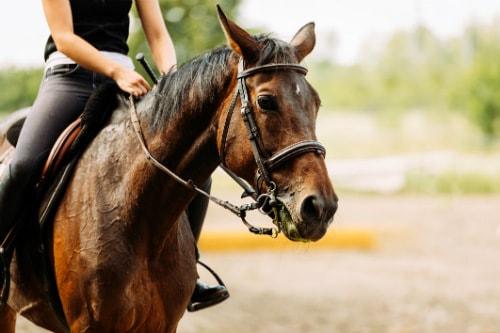 woman in black clothing, horseback riding in kauai hawaii