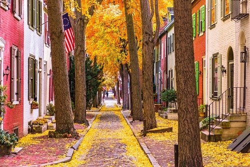 cobble street in norfolk, va with golden leaves falling from the trees