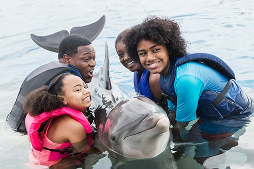 family of 4 holding a dolphin in la romana