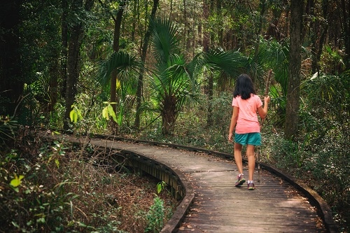 girl hiking a wooden trail in tampa park